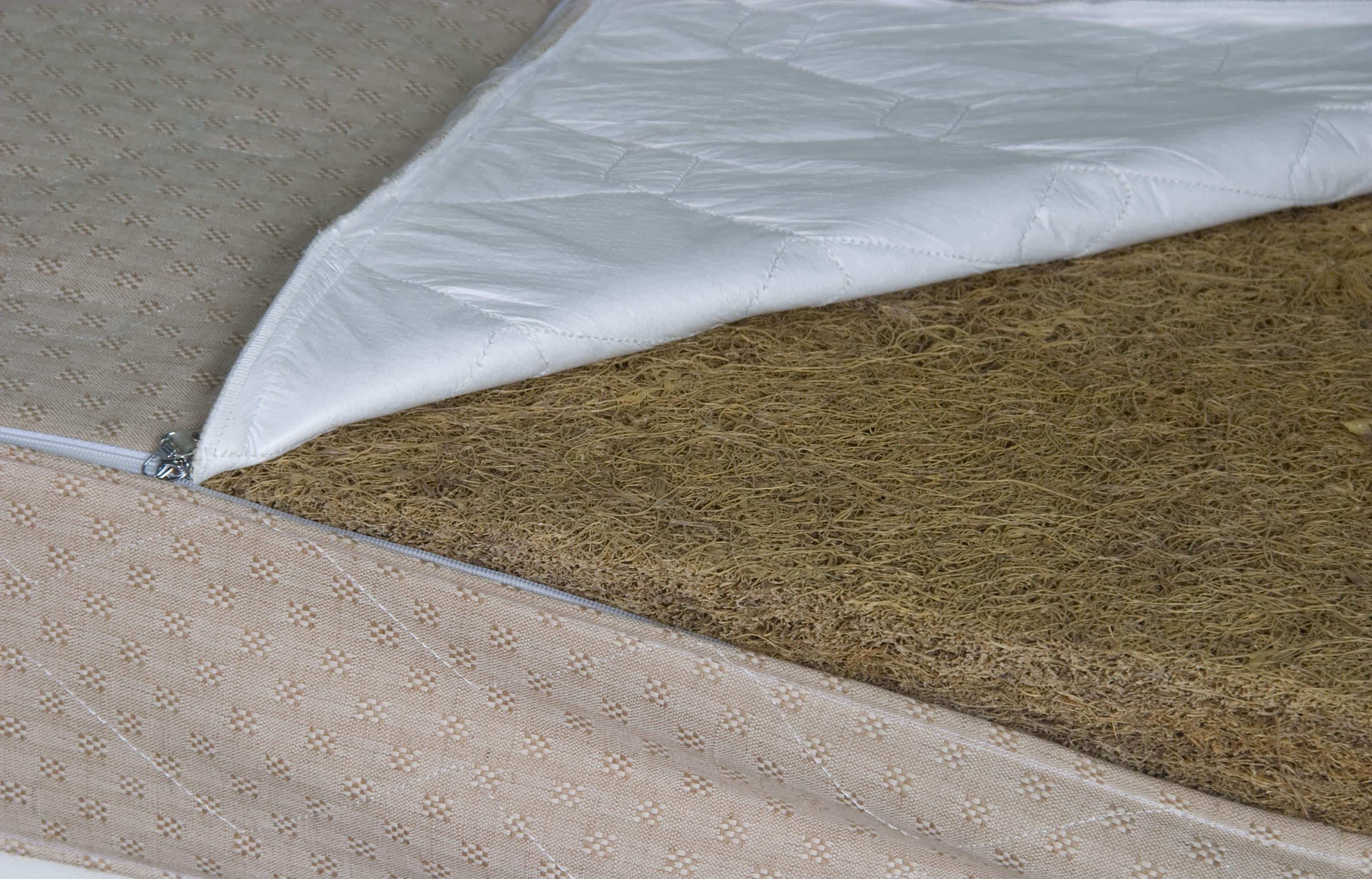 大自然棕床垫幻境系列CRW_0259CRW_0259
