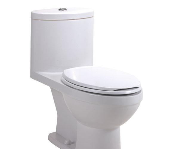 美标连体座厕丽科系列加长型CP-2007CP-2007