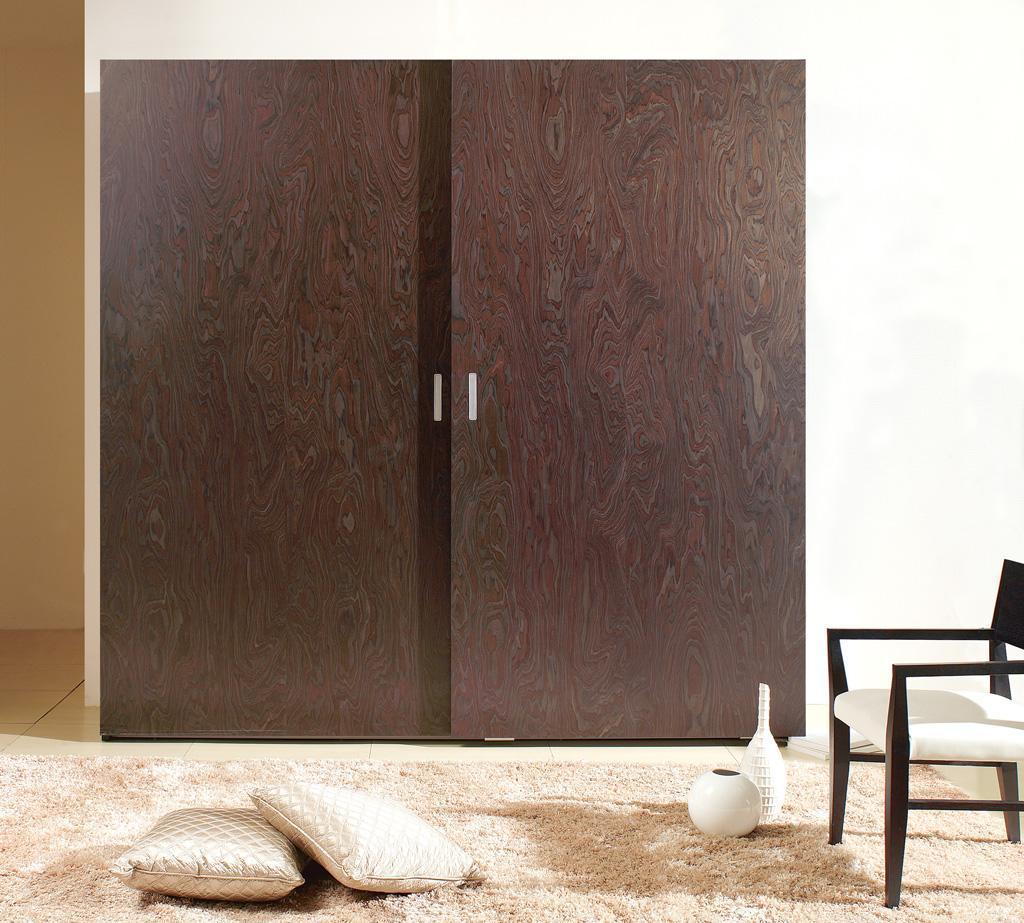 城市爱迪本木哲学系列黑檀吊趟门衣柜