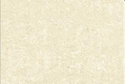 王者地砖钻影系列KPD8202KPD8202