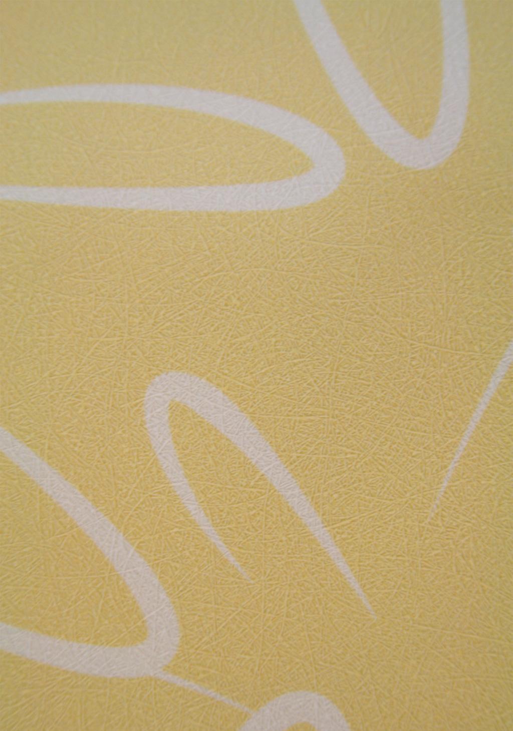 豪美迪壁纸成人系列-XM1211XM1211