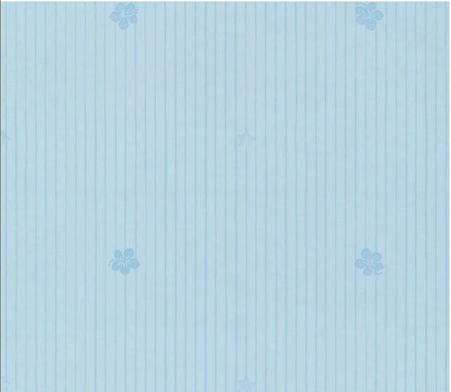 玉兰NPP152004壁纸NPP152004