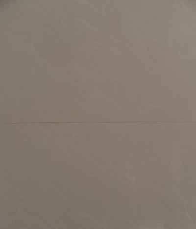 能强瓷砖-6TG028