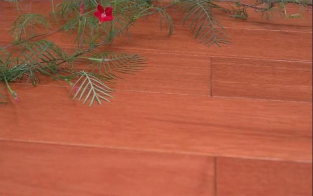 安信实木地板-大膜瓣豆