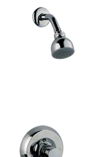 科勒- 蒂亚 入墙式花洒龙头K-R12063T-CPK-R12063T-CP