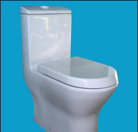 乐家卫浴尼梭系列连体座厕(阻尼欧乐盖板)3-49613-49617..0