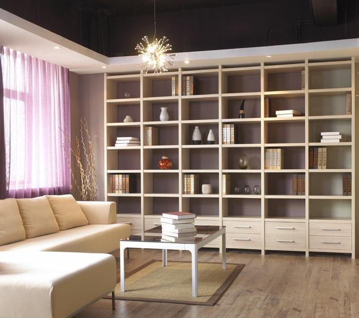 索菲亚家具-D款书柜D款