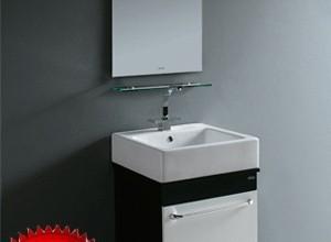 法恩莎PVC浴室柜(柜盆)FP4659(505*465*165mmFP4659