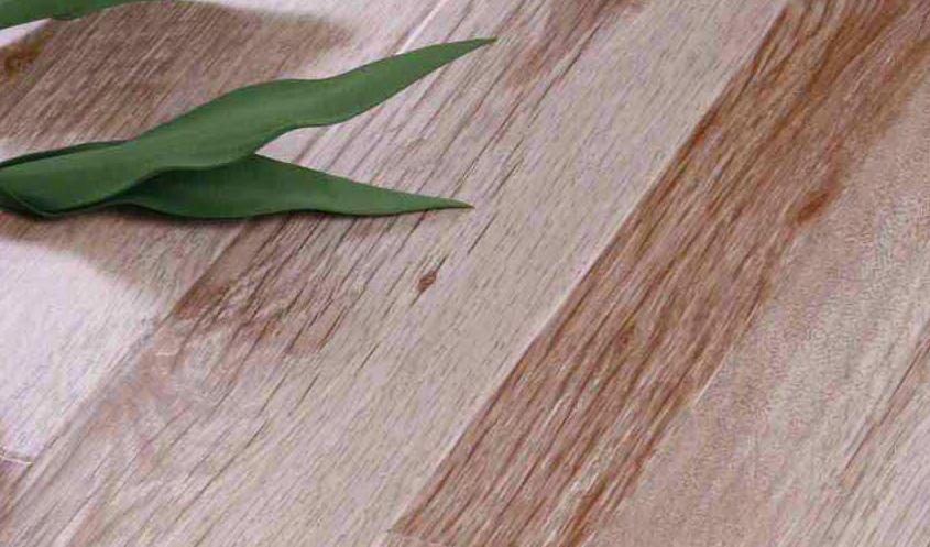格林德斯.泰斯地板强化复合地板-美洲白橡木